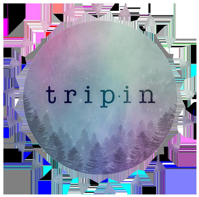 Trip in